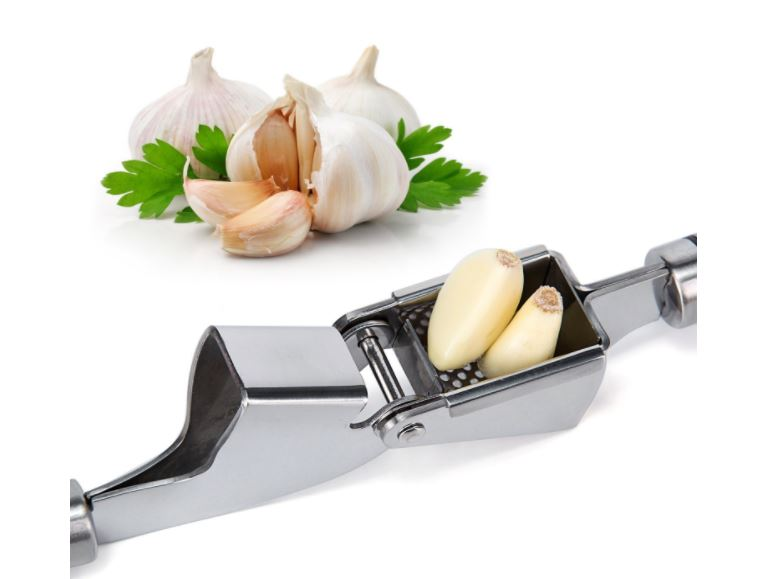 ORBLUE Propresser Stainless Steel Garlic Press and Crusher