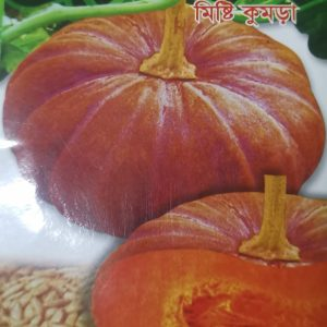 bangladeshi pumpkin seeds for sale